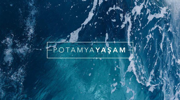Sürdürülebilirlik İlkesi ve Potamya!